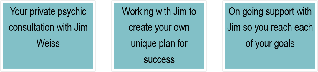 System For Success by Jim Weiss